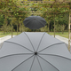 Borek metal parasol Ferrara.jpg