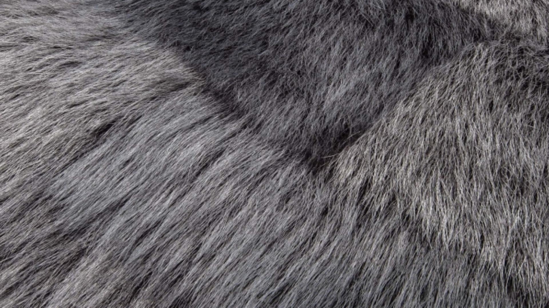 KLEIN-Carpet-ruimtelijk-Sheep-DTO-001-27-bewerkt.jpg