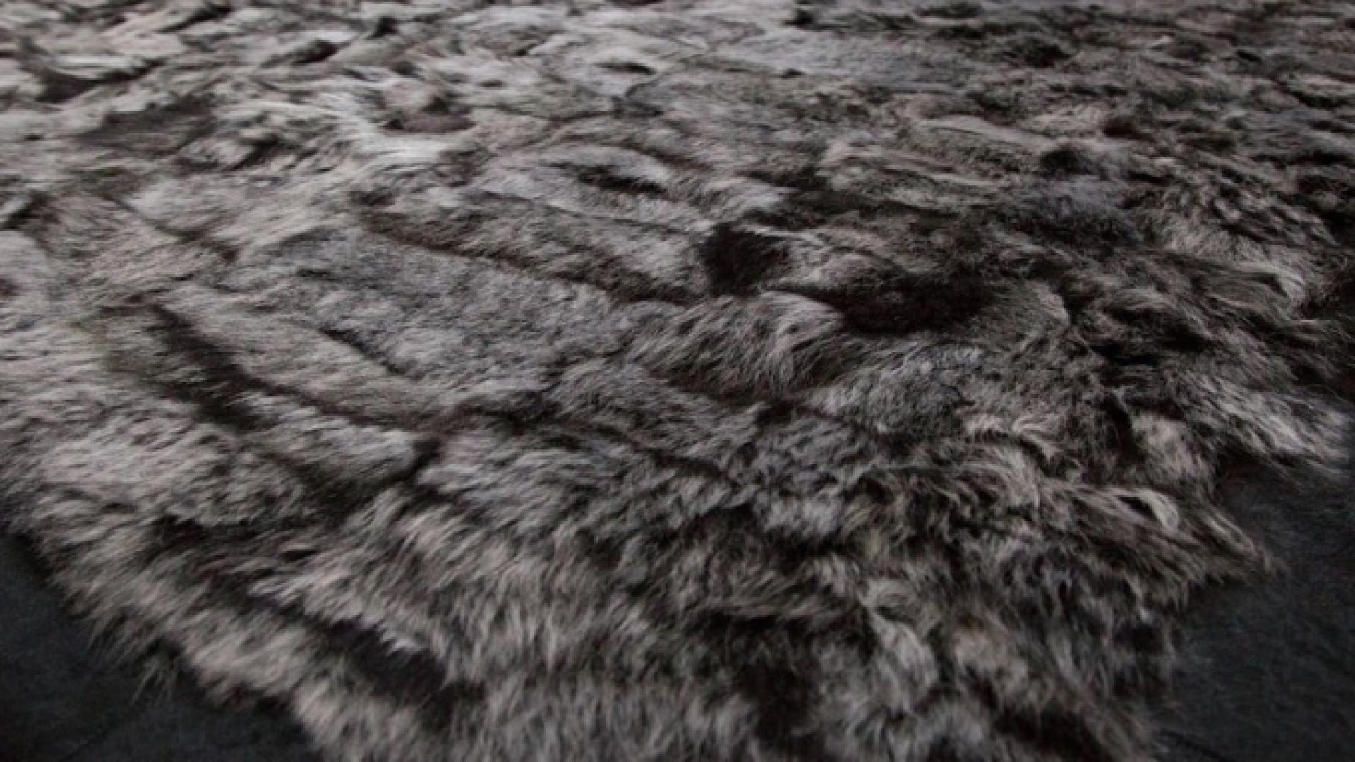 Sheep-Black.jpg