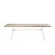 Branch_dining table_210cm_teak top_WIT.jpg
