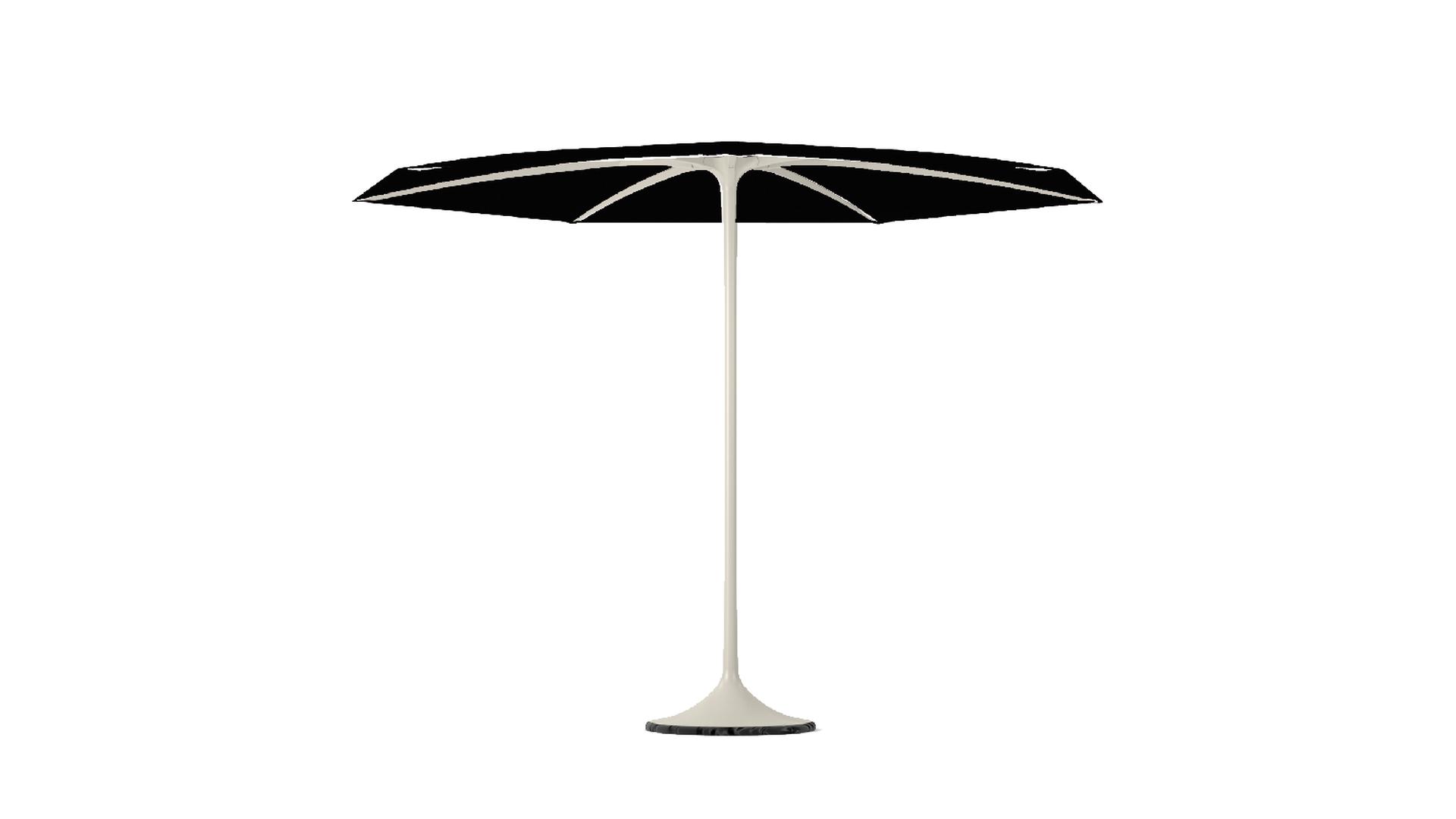 palma parasol.png